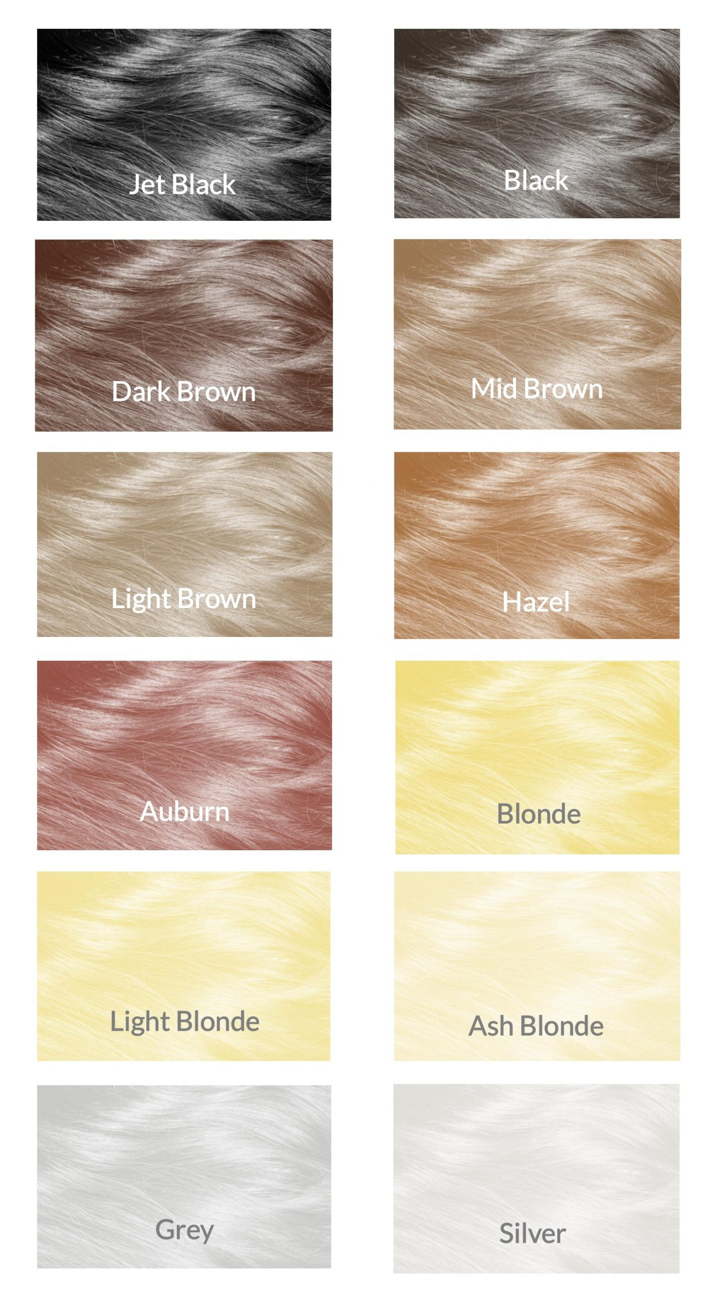 COLOUR PANEL Mane HairThickener