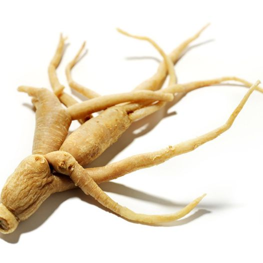 Ginseng and Hair Loss